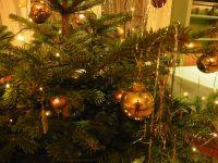 weihnachtsfeier_dez18_0004